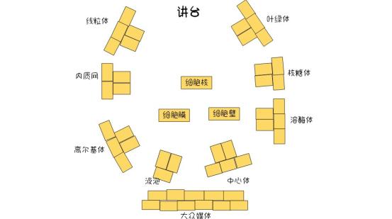 """[生物]""""金星奖""""生物组教研组选拔活动1394.png"""